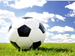 DC Public Schools Application to Use Facilities - Soccerball on grass