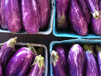 Eastern Market, DC - Eggplants Display