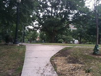 Kalorama Park (current path view)
