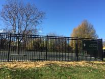Francis Dog Park